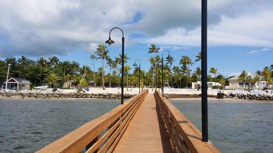 Islander Resort, a Guy Harvey Outpost: islander