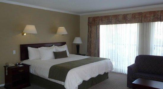 Riverland Inn & Suites: Room