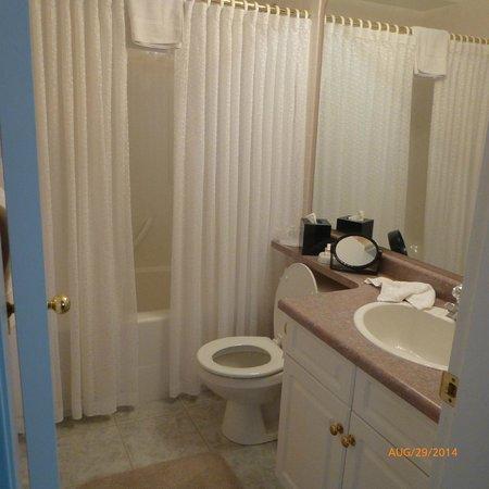 Cedar Heights Bed and Breakfast: En Suite Bath for London Room