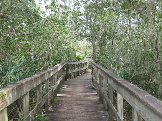Turkey Creek Sanctuary: Boardwalk trail