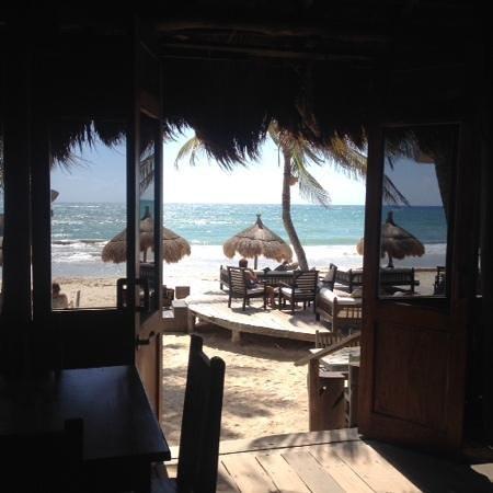 La Zebra Colibri Boutique Hotel : view from inside the restaurant