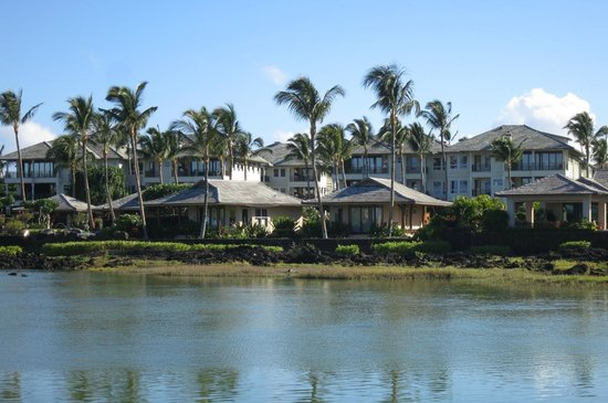 Kolea At Waikoloa Beach Resort And Pond Seen From A Bay