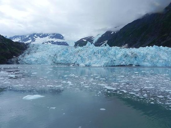 26 Glacier Cruise by Phillips Cruises and Tours: 26 Glacier Cruise by Phillips Cruises & Tours, LLC
