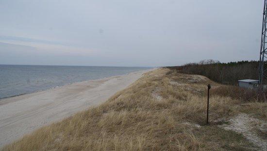 Nida Beach: West beach