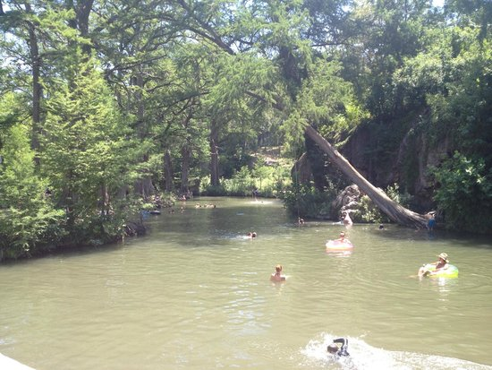 Krause Springs: The swimming hole.