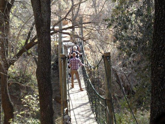 Jaci's Safari Lodge: Swing Bridge Entrance for able bodied