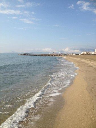 Les Jardins de Neptune : Plage de Saint Cyprien