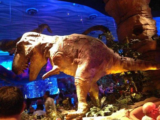 Cardapio foto de t rex orlando tripadvisor for T rex location