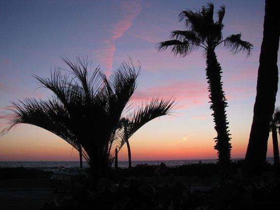 Sabal Palms Inn : Sunset from the porch