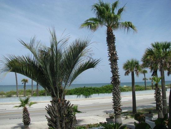 Sabal Palms Inn : From our room