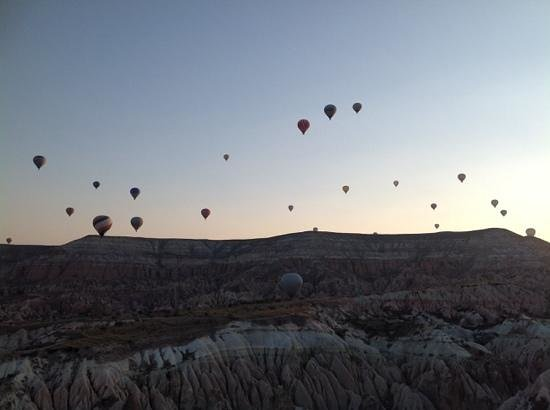 Butterfly Balloons: A sky full of balloons at sunrise