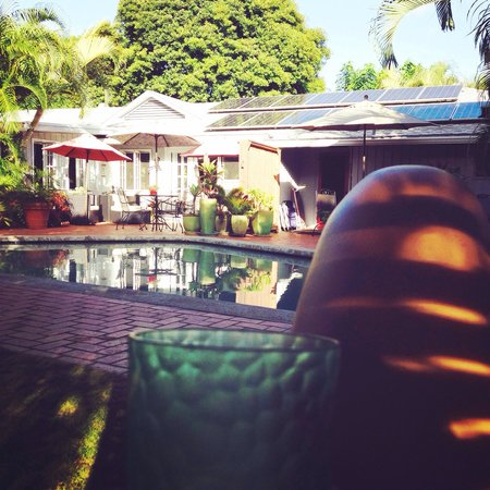 The Hula Breeze : Happiest of happy hours poolside.