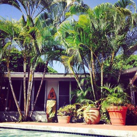 The Hula Breeze: Poolside.