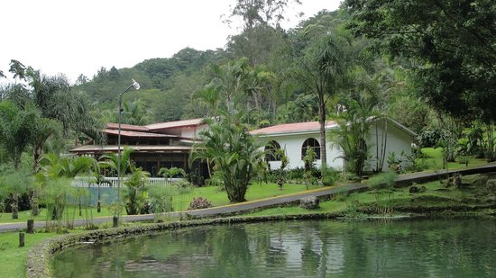 Hotel Rio Perlas Spa & Resort: Área de estanques