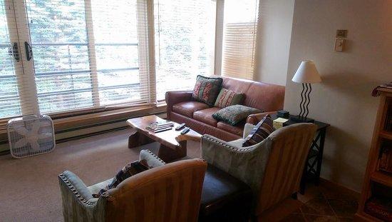 Simba Run Vail Condominiums : Living Room Is Spacious