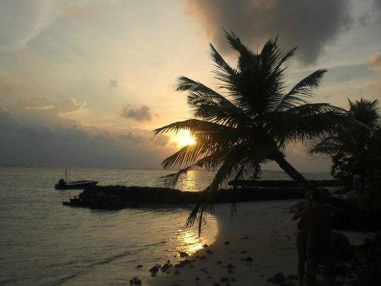 Velidhu Island Resort : Abendstimmung