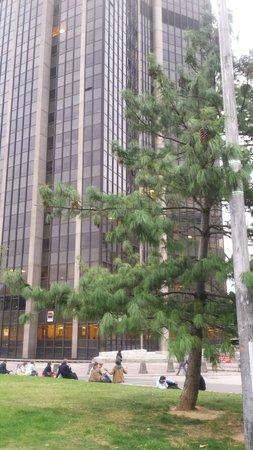 Timhotel Tour Montparnasse: 2 minutes à pieds de la tour Montparnasse.