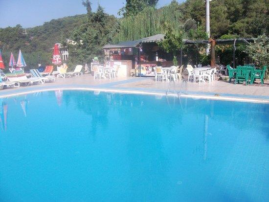 Pink Palace: pool bar area