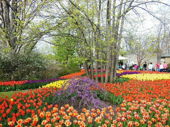 Incroyable Cincinnati Zoo U0026 Botanical Garden: Blooms U0026 Tunes Event In Spring/April