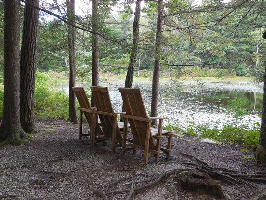 Innisfree Gardens: Peaceful sitting area