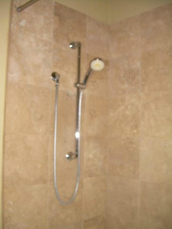 Crescent Quarters Inn: Shower