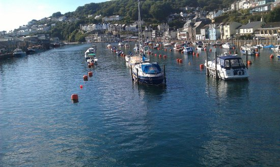 Trelawne Manor Holiday Park: looe harbour