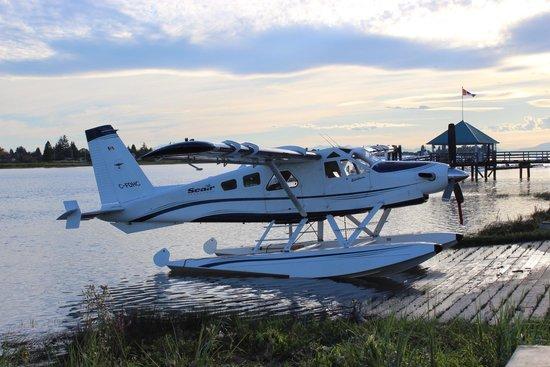 Flying Beaver Bar & Grill: Plane landing