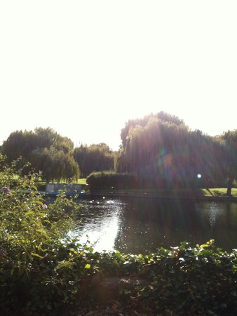 The River Avon Trail: River Walk