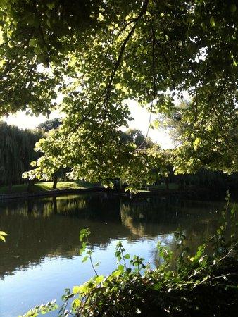 The River Avon Trail: River Walk