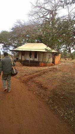 Sanctuary Swala: Tent