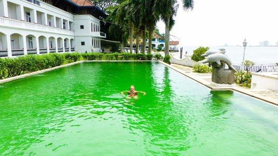Brunton Boatyard: la piscina