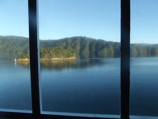 Bluebridge Cook Strait Ferry: Cruising through the Marlborough Sounds