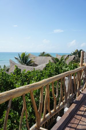 Ahau Tulum: view from the top