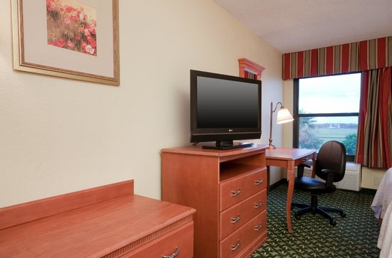 Hampton Inn Houston Hobby Airport: Guest room HDTV