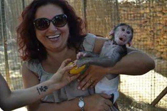 Zoo Castellar: me encanto