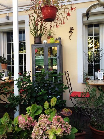 Hotel Victorine : Un angolo del giardino