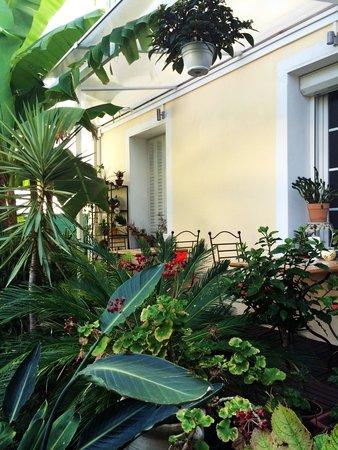 Hotel Victorine : Il giardino, piccola oasi