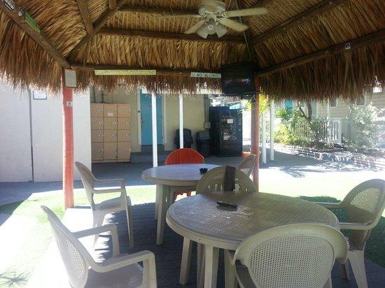 Key West Youth Hostel & Seashell Motel : Courtyard