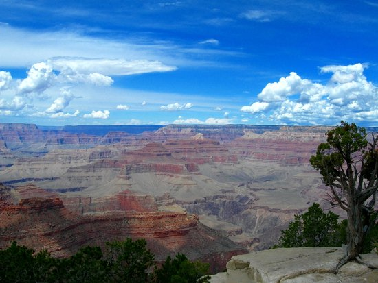 Pink Jeep Tours Las Vegas: Gran Canyon