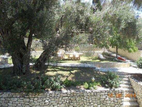 Villa Anthoussa : Gardens