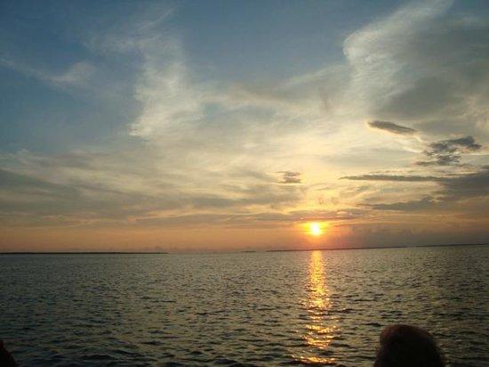 Seahorse Water Safaris: Sunset Cruise on St. Joe Bay