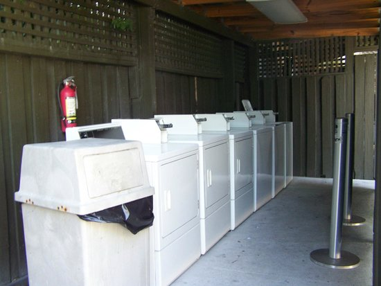 Blue Marlin Motel: laundry room, great ammenity!
