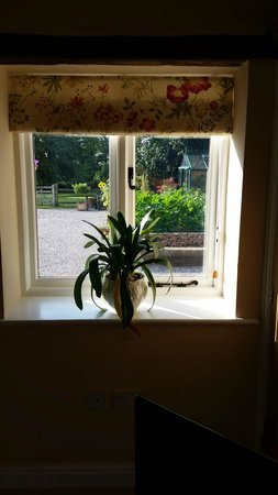 Llanychan, UK: Ty Derw Bach a view onto the vegetables