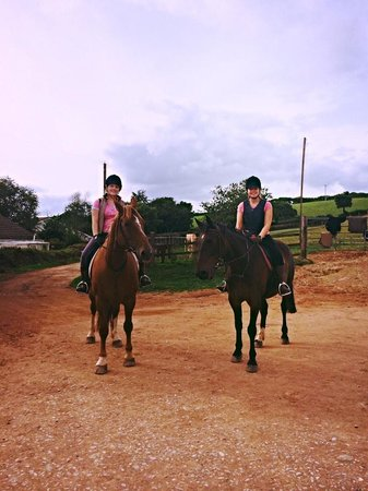 George and Saffie - lovely horses!! - Picture of Hayes Farm