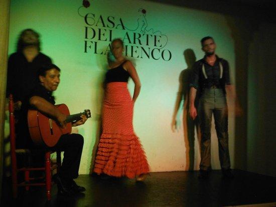Casa del Arte Flamenco: Última parte del espectáculo.