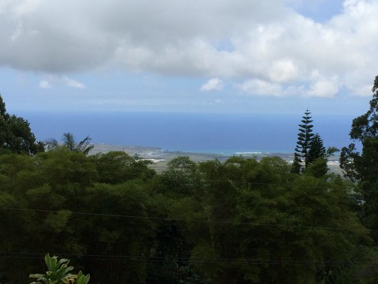 Ohi'a Park Estate: Ocean view from patio
