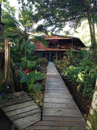 Hotel Banana Azul: From the Beach