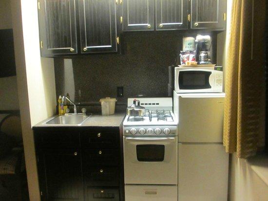 Radio City Apartments : Room 311 kitchenette