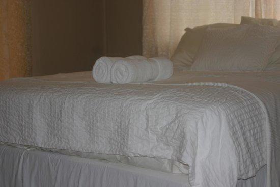 Bocas Ridge Hotel: Standard Room