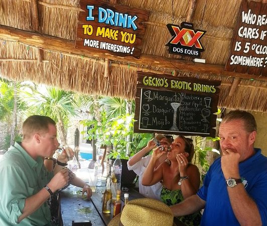 Blue Gecko Cantina: Lots of WONDERFUL Tequilas!!!!!!